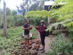 petani-di-desa-bontosalama-kecamatan-sinjai-barat-memperlihatkan-umbi-porang.jpg