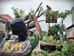 petugas-dari-dinas-lingkungan-hidup-kota-makassar-memotong-pohon-tumbang-1.jpg