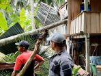 pohon-kelapa-tumbang-timpa-rumah-warga-di-kecamatan-tinambung.jpg