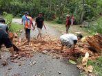 pohon-tumbang-mengakibatkan-akses-jalan-dan-aliran-listrik-sempat-terputus.jpg