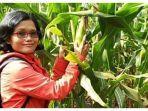 ppl-polewali-mandar-abigael-lomo-menyuluh-untuk-menanamkan-rasa-cinta-pertanian-2.jpg