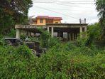 proyek-pembangunan-wisma-pemkab-tana-toraja-di-lapandan-makale-ditumbuhi-semak-belukar.jpg