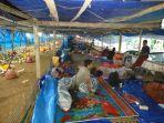 puluhan-pengungsi-gempa-di-majene-tepaksa-tinggal-di-kandang-ayam-minggu-1712021.jpg