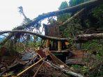 rumah-adat-di-rantelemo-tana-toraja-hancur-tertimpa-pohon-tumbang-sabtu-2592021.jpg
