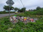sampah-berserakan-di-jalan-poros-bantaeng-bulukumba-tepatnya-di-desa-nipa-nipa.jpg