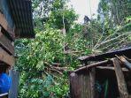 satu-unit-rumah-warga-mengalami-rusak-parah-akibat-tertimpa-pohon-tumbang-di-dusun-panyurak.jpg