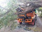 sebuah-pohon-besar-tumbang-dan-menimpa-truk-melintas-di-desa-marioriaja.jpg