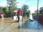 seekor-anjing-yang-sudah-dua-hari-terjebak-dalam-banjir-berhasil-dievakuasi-personel-damkar-wajo.jpg