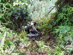 seorang-asn-di-toraja-utara-ditemukan-tewas-di-poros-buntu-datu-kamis-712021.jpg