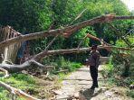 seorang-pria-di-toraja-utara-tewas-tertimpa-pohon-selasa-2552021-43.jpg