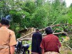 seorang-pria-di-toraja-utara-tewas-tertimpa-pohon-selasa-2552021.jpg