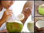 sering-minum-air-kelapa.jpg
