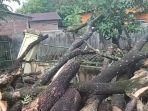 suasana-pagar-rumah-milik-warga-rusak-akibat-tertimpa-pohon-tumbang-di-jl-poros-bontonompo.jpg