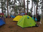 tenda-pengunjung-yang-terpasang-saat-liburan-di-hutan-pinus-rombeng-bantaeng.jpg