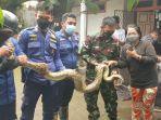 tim-rescue-damkar-gowa-mengevakuasi-ular-jenis-piton-di-atap-rumah-warga-di-dusun-taborong.jpg