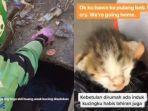 video-viral-driver-ojol-selamatkan-anak-kucing-yang-tenggelam-di-selokan.jpg