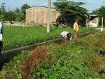 warga-desa-parangmata-melakukan-kerja-bakti-membersihkan-saluran-air.jpg