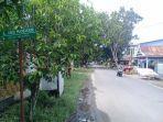 warga-menjemur-kasur-di-jl-andi-mandasini-kecamatan-sinjai-utara-sinjai.jpg
