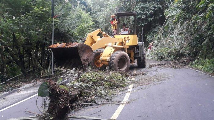 Longsor Tutup Separuh Badan Jalan Raya Tinoor, Jalur Manado-Tomohon Terganggu