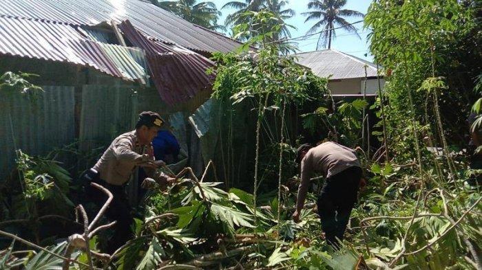 Data Kerusakan Bangunan Akibat Badai Sikon Tropis Surigae di Talaud