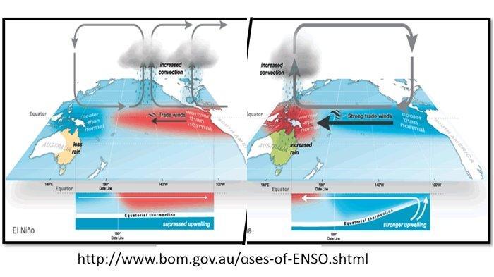 Apa Itu El Nino? Fenomena Alam yang Sebabkan Panas di Wilayah Indonesia, Berpengaruh Bagi Nelayan
