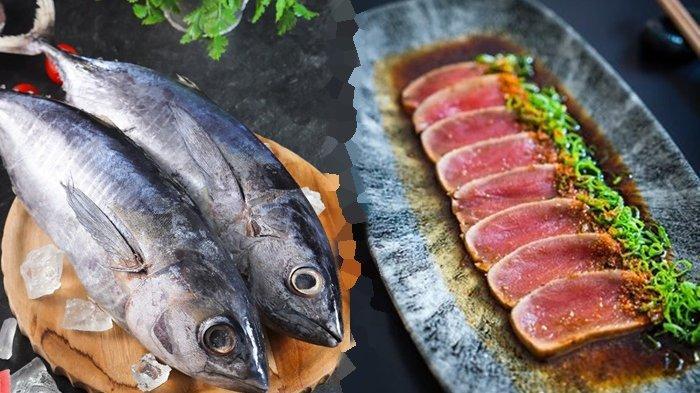 Apa Itu Tuna Tataki? Makanan dari Jepang yang Dipanggang Menggunakan Wajan Teflon