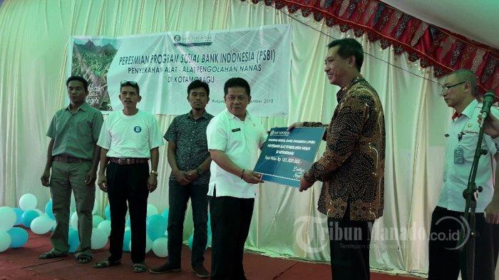 Alasan Bank Indonesia Bantu Pengembangan Nanas di Kotamobagu