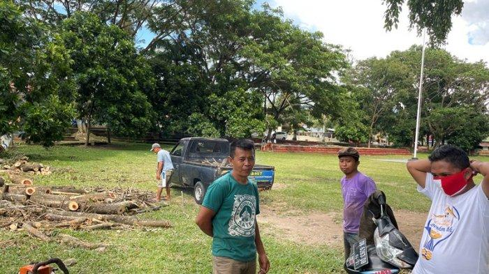 Warga Berbondong-bondong Ambil Potongan Kayu di Alun-alun Boki Hotinimbang