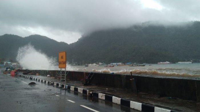 Setelah Diterjang Gelombang Laut, Begini yang Terjadi pada Tanaman di Kelurahan Tidore