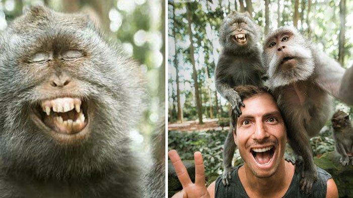 Ekspresi Bule & Dua Ekor Monyet Wefie Fotonya Viral, Warganet Malah Lihat Kejanggalan Ini!