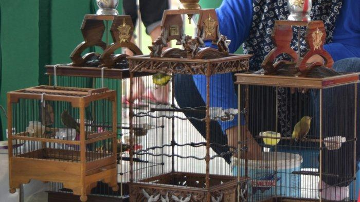 Penjelasan Balai Karantina Pertanian Manado soal Pengiriman Unggas ke Luar Daerah