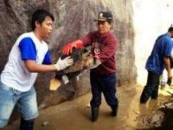 Vicky akan Beri Keterangan Soal Dana Banjir 2014 di Kejagung