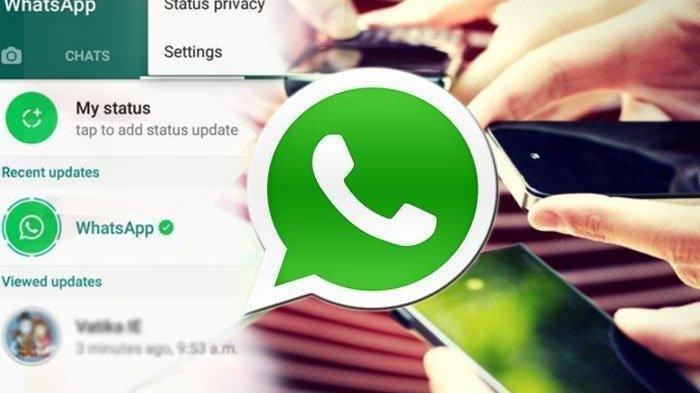WASPADA, Notifikasi Terbaru Bakal Muncul di WhatsApp, WA Bisa Diblokir Jika Salah Tanggapi