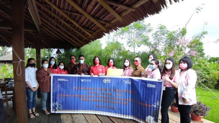 Dapat Modal dari BRI Manado, Begini Respons Kelompok Wanita Tani Pembudidaya Bunga Tomohon