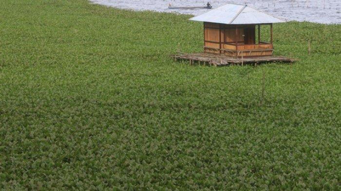 Cegah Pendangkalan Danau Tondano, Wagub : Pusat Kucurkan Rp 400 Miliar