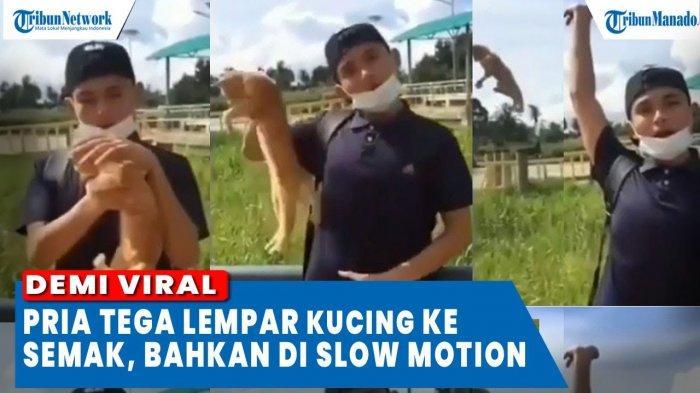 VIDEO Demi Viral, Pria Ini Tega Lempar Kucing ke Semak-semak