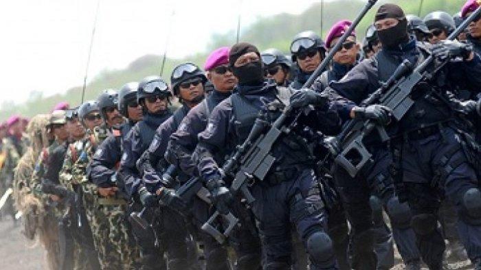 Wow, Viral Pasukan Siluman Denjaka Dikirim Basmi KKB Papua? Berikut Penjelasan TNI AL dan Marinir