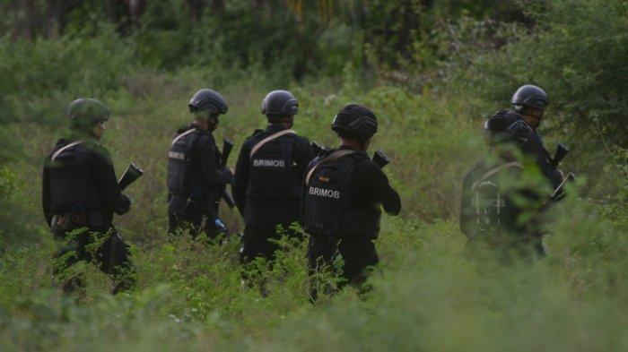Tiga Lembaga Ini Ikut Tangani KKB di Papua, Termasuk Densus 88 Segera Dikirim ke Papua