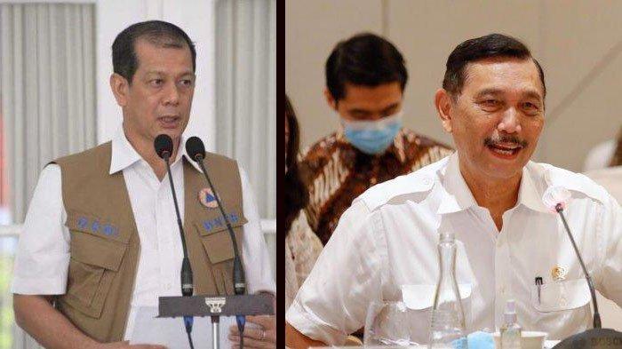 INFORMASI LENGKAP, Data Covid-19 di Indonesia Selama 2 Pekan saat Ditangani Luhut & Doni Monardo