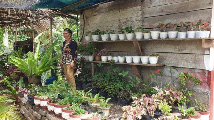 Usaha Editje Tampil Mewujudkan Desa Pangirolong Sebagai Kampung Bunga di Sitaro