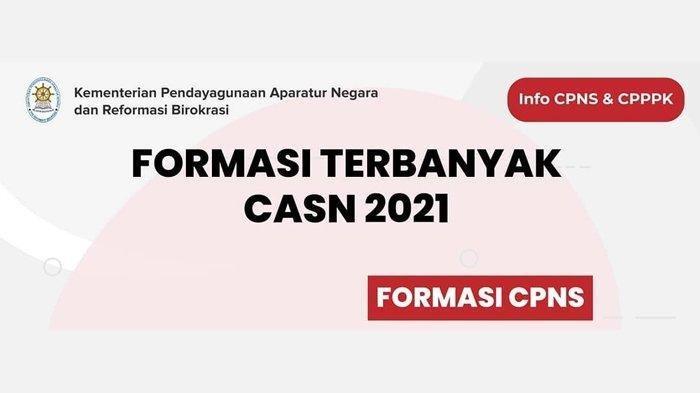 Ingin Daftar CPNS 2021? Simak Formasi Terbanyak Tahun Ini, Ada Perawat hingga Analis