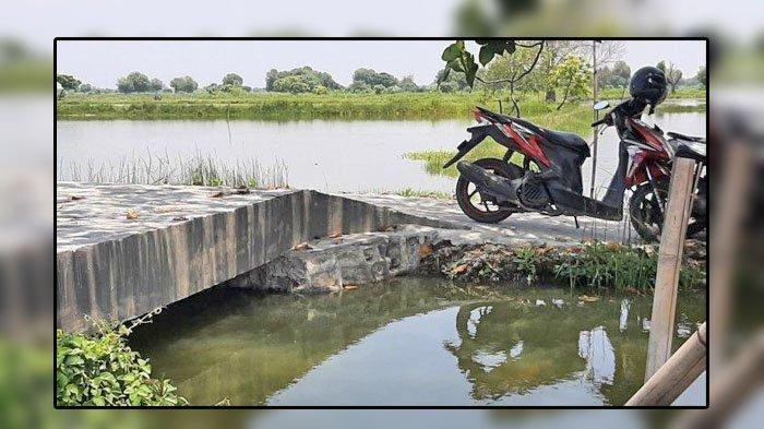 VIRAL Jembatan Senilai Rp 200 Juta, Panjang & Lebar 4 Meter, Begini Penjelasan Kepala Desa