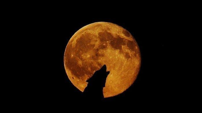 Deretan Mitos Gerhana Bulan di Seluruh Dunia, Ada yang Sering Dianggap sebagai Pertanda Buruk ...