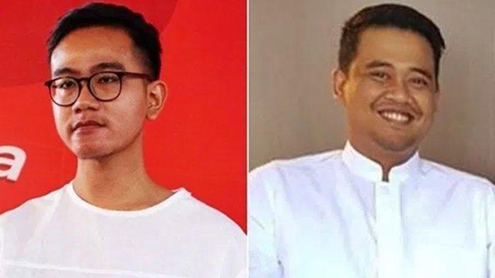 Begini Harta Kekayaan Anak dan Menantu Jokowi, Saat Resmi jadi Wali Kota Solo dan Medan