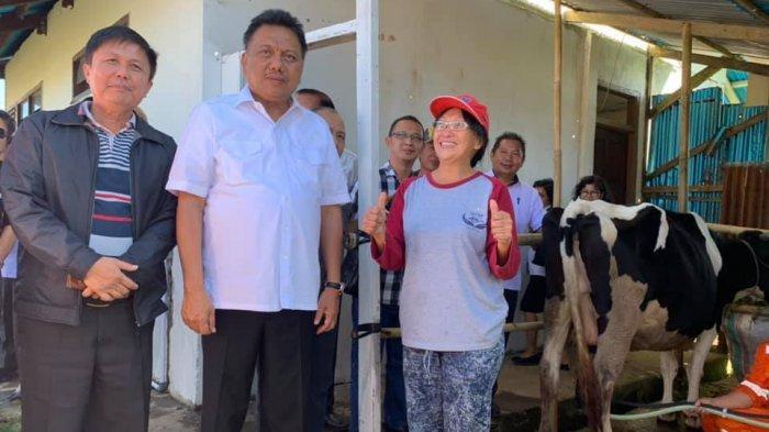 Gubernur Olly Dondokambey Siapkan Bolmut Jadi Sentra Peternakan Sapi,Kerja Sama Australia