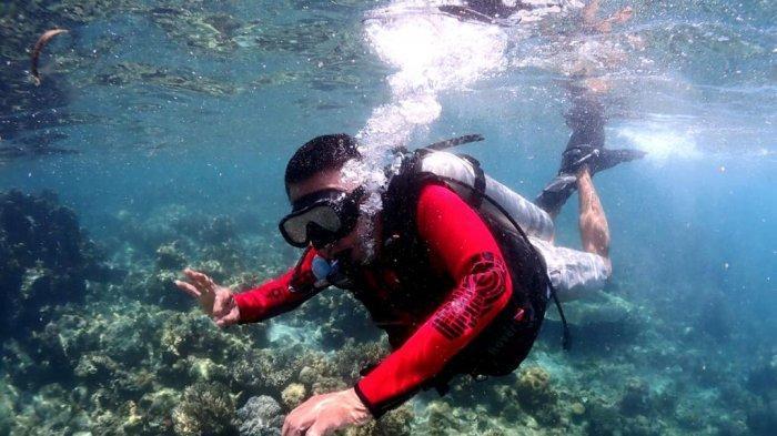Gubernur Olly Dondokambey Buka Mangatasik Underwatter Photo Competition, Sempatkan Snorkeling di Laut