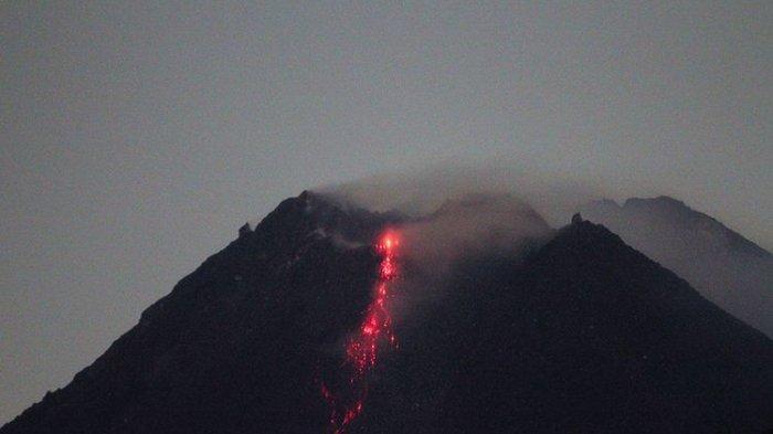 Merapi Kembali Batuk, Luncurkan 15 Kali Guguran Lava Pijar, Pelaku Wisata Diingatkan Tidak Merapat