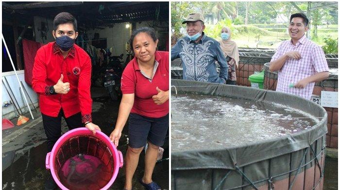 Habrianto Achmad Bantu Bibit 800 Ekor Bibit Ikan Lele, Vivi Senang Bisa Membudidayakan Ikan Lele