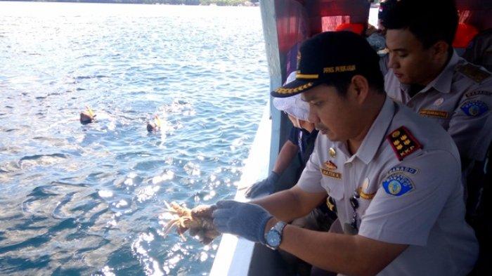 Komoditi Perikanan Sulut Sumbang Rp 1,6 Triliunpada2018, Didominasi Produk Olahan Ikan Kaleng