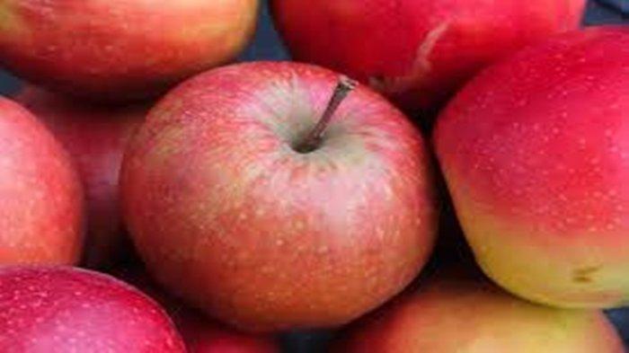 Arti Mimpi Tentang Apel, Pertanda akan Mendapatkan Pekerjaan hingga Ada Kabar Baik, Ini Tafsirannya